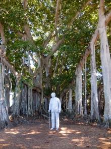 Thomas Edison, Fort Meyers FL